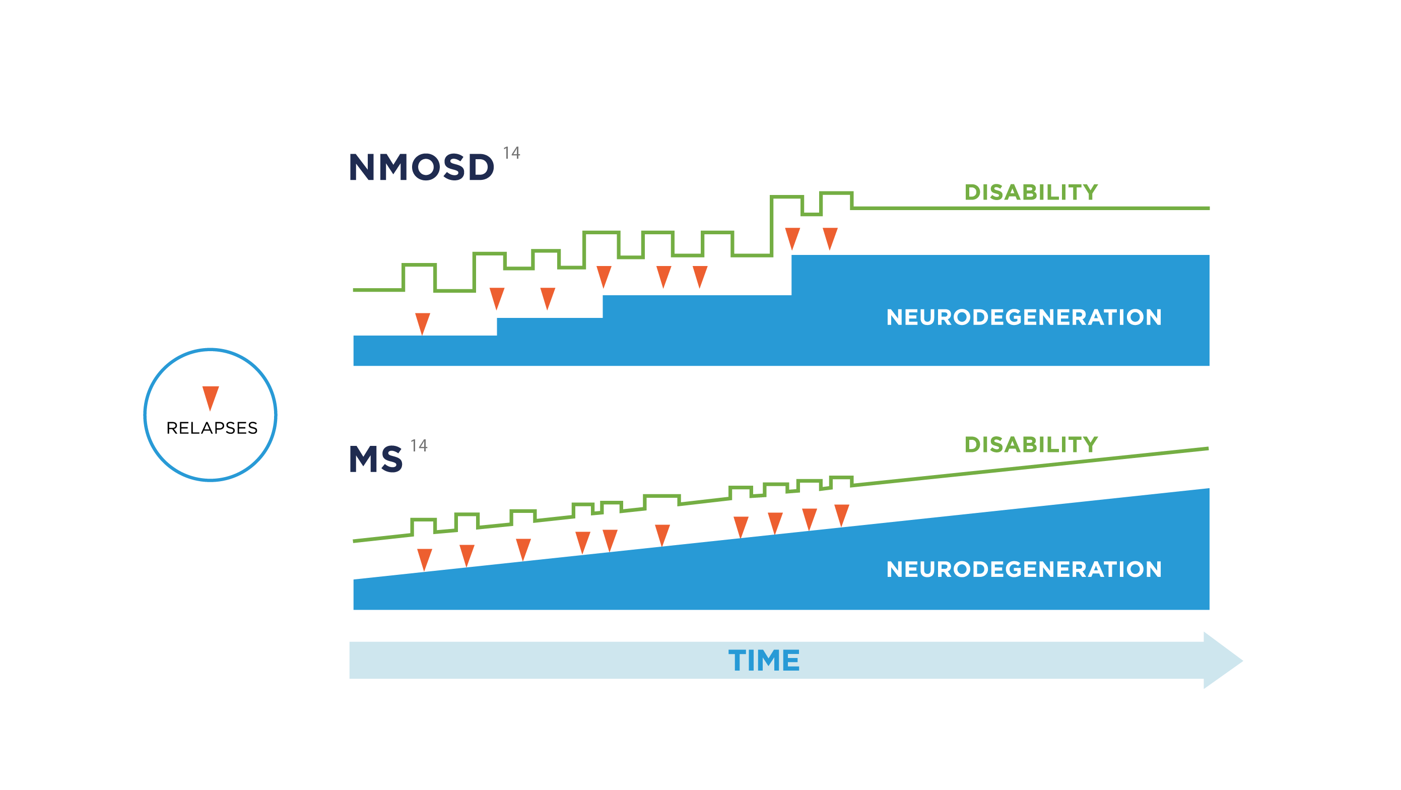 The amount of neurodegeneration that people with NMOSD suffer is almost exclusively related to their relapses. This is different from MS, which is a progressive disease from the start, no matter how it manifests, as disability tends to accumulate relentlessly.<sup>14</sup>