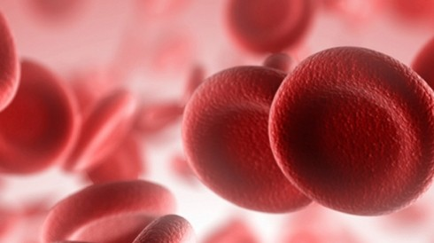 Read About Hematology